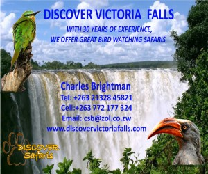 DISCOVER VIC FALLS POSTER FINAL